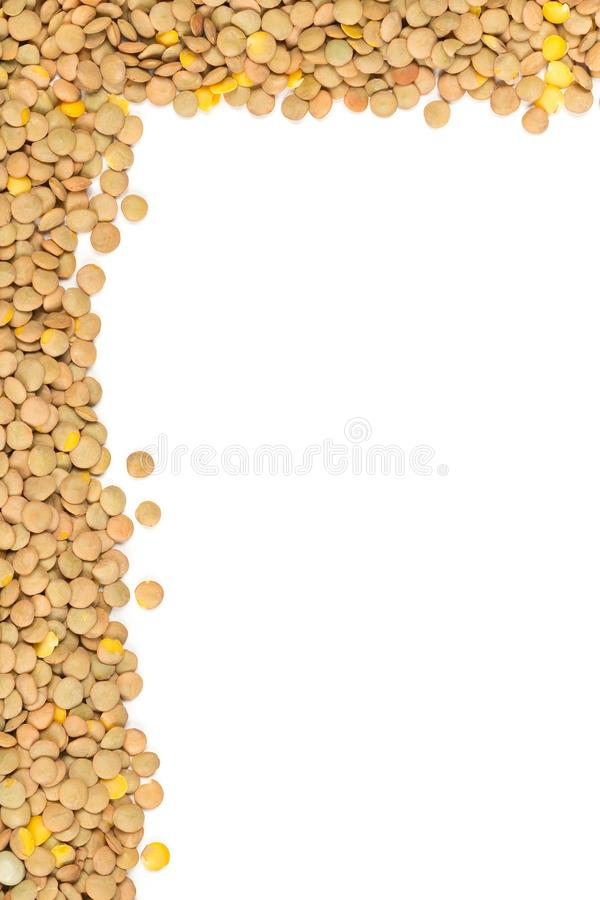 Raw, dry, uncooked brown lentil legumes frame border texture background flat lay top view from above. With copy space stock images