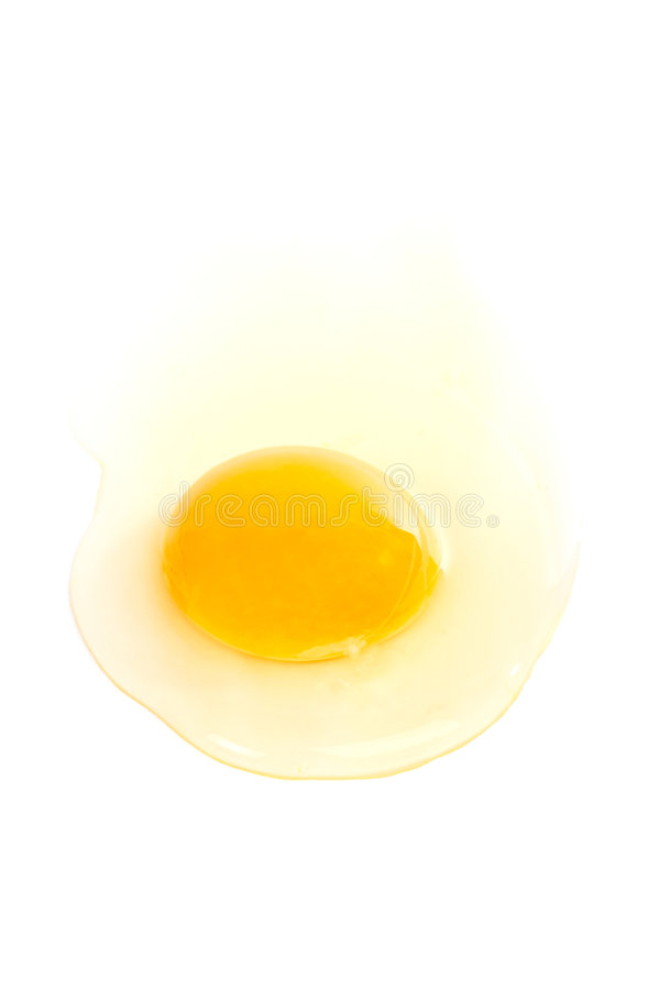 Raw egg stock photography
