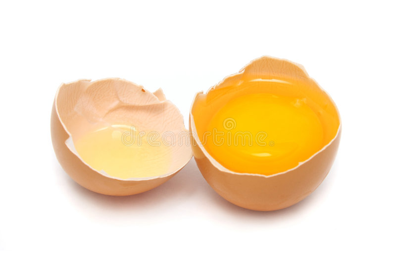 Raw Egg. A egg tear in to half with yolk and albumin stock photos