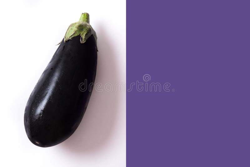 Raw eggplant on white and violet background. stock photography