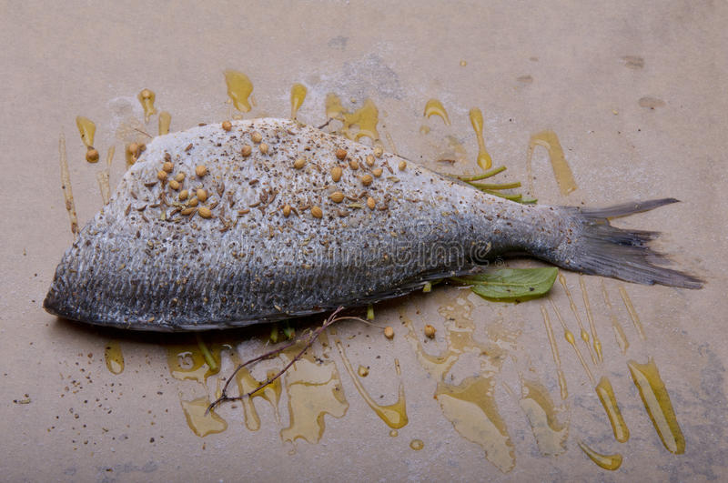 Raw fish on baking paper with herbs and olive oil.