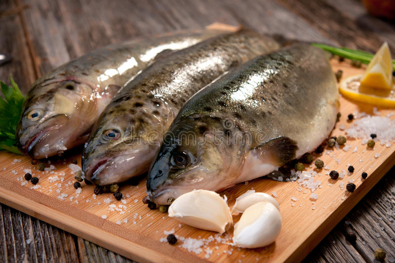 Raw fish (brown trout). Brown trouts on the wooden board with lemon and herbs stock photography