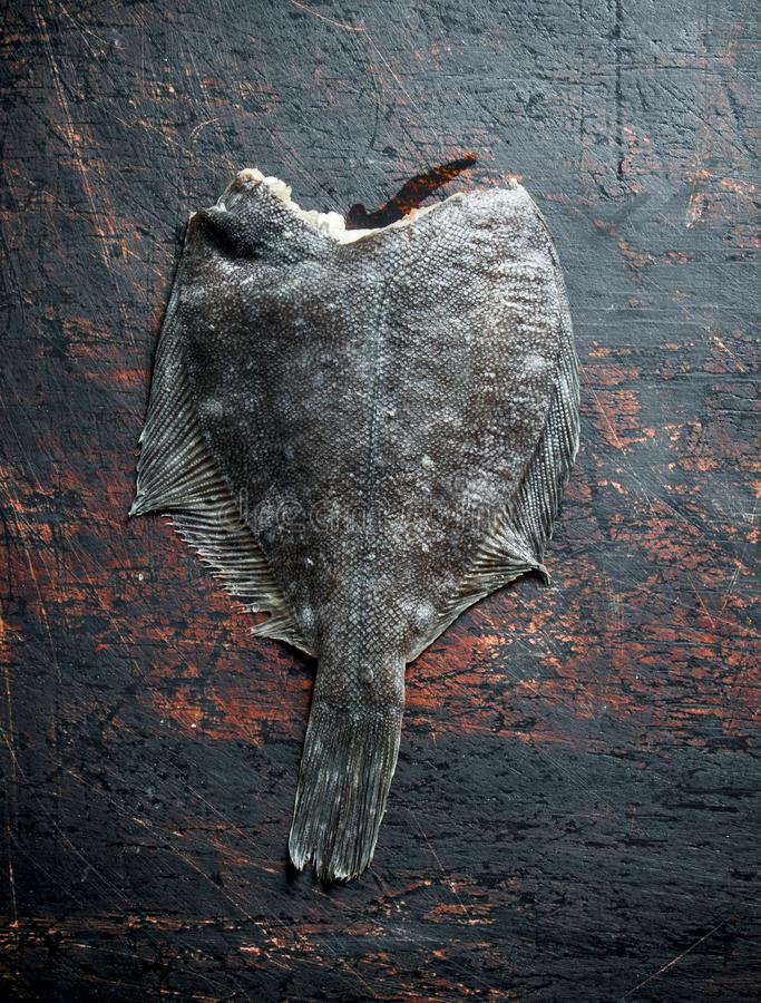 Raw fish flounder. On dark rustic background stock photo
