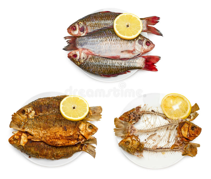 Raw fish, fried fish, bones of fish on plate stock photo