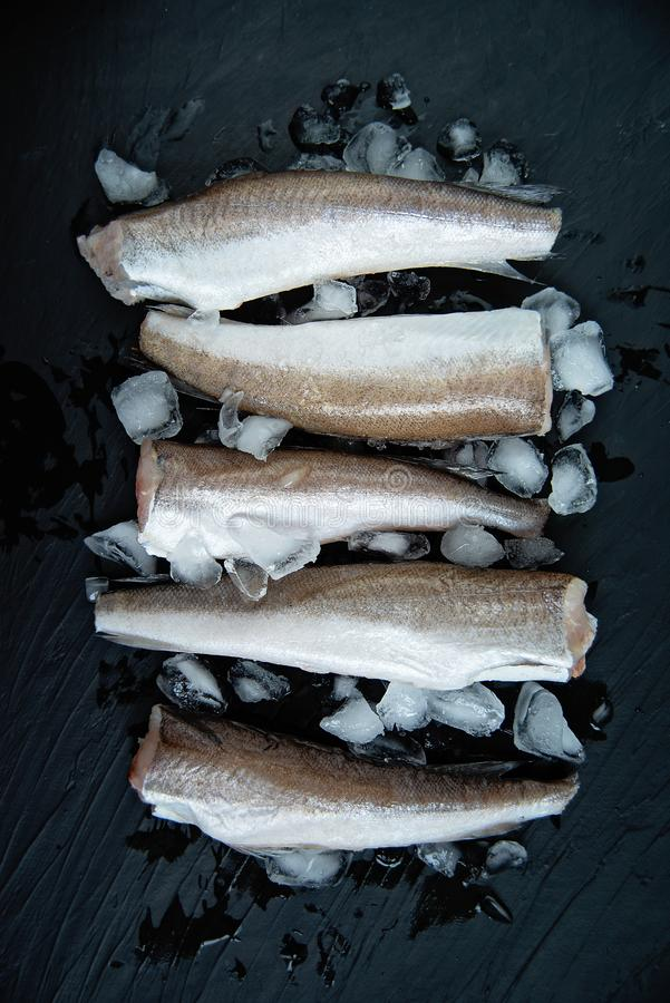 Raw fish hake. Five Raw fish fillet on ice on dark background. Food background. top view, fresh, seafood, healthy, cooking, meal, uncooked, diet, restaurant royalty free stock images