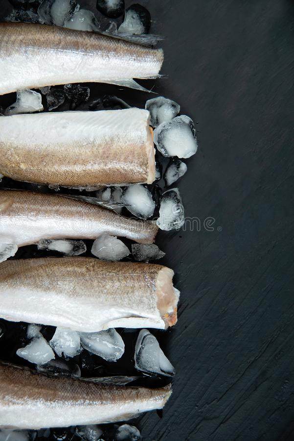 Raw fish hake. Five Raw fish fillet on ice on dark background. Food background. top view, fresh, seafood, healthy, cooking, meal, uncooked, diet, restaurant royalty free stock photos