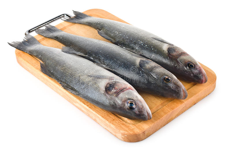 Raw fish sea bass royalty free stock photography