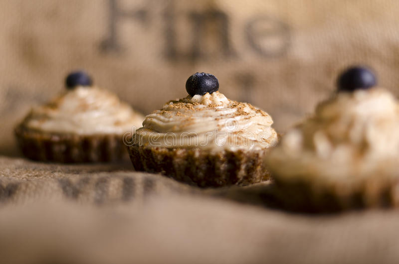 Raw food cupcakes. With nutcream and blueberry on top, vegan ingredients only stock images