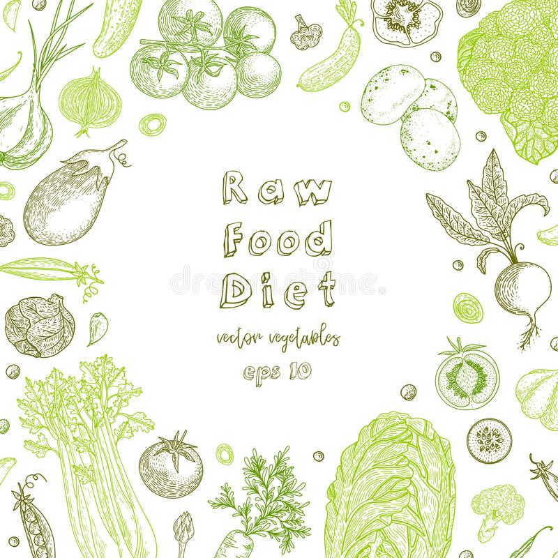 Raw food diet. Vegetarian vintage background with natural organic products. Healthy life. Vector composition of fresh vector illustration