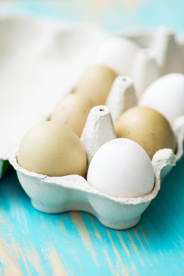 Raw fresh araucana chicken eggs stock photos