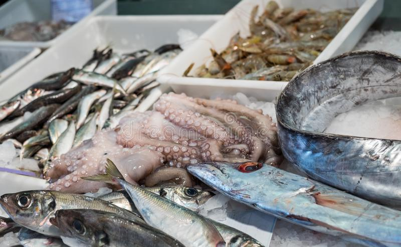 Raw and fresh fish, octopus and shrimps on ice, for sale at local farmers market in Lisbon royalty free stock photos