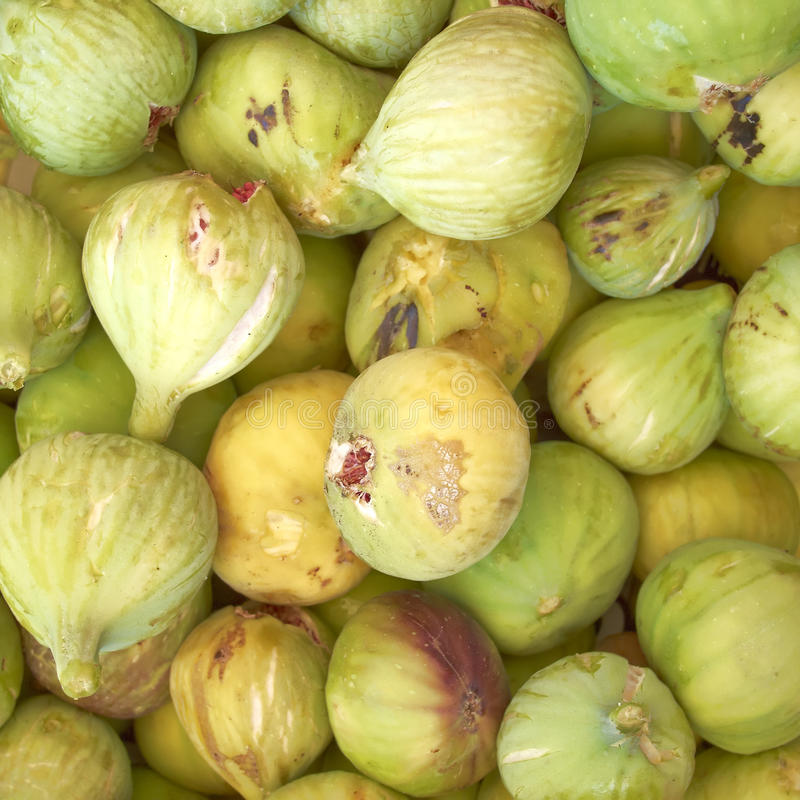 Download Raw fresh green figs stock image. Image of group, nature - 25977099