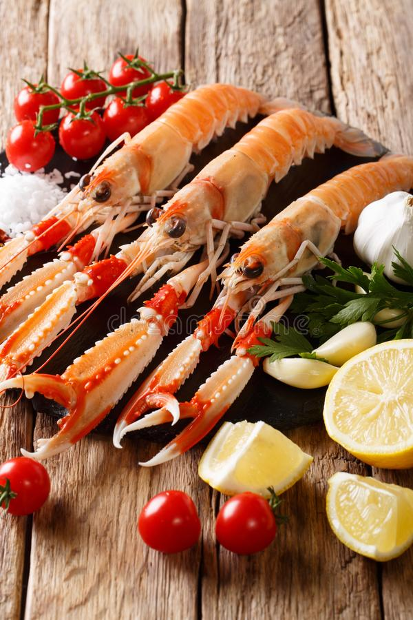 Raw fresh langoustines, Dublin Bay prawn, scampi with lemon, gar royalty free stock photo