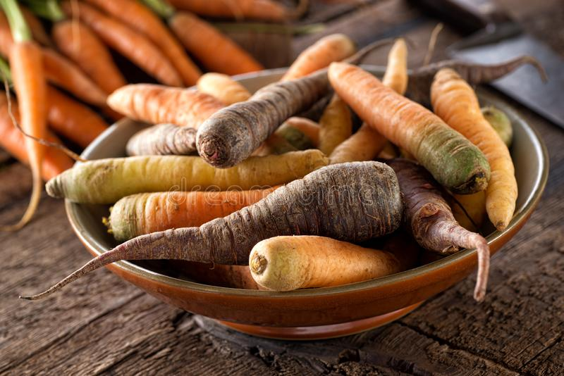 Raw Fresh Organic Heirloom Carrots in a Bowl royalty free stock photography