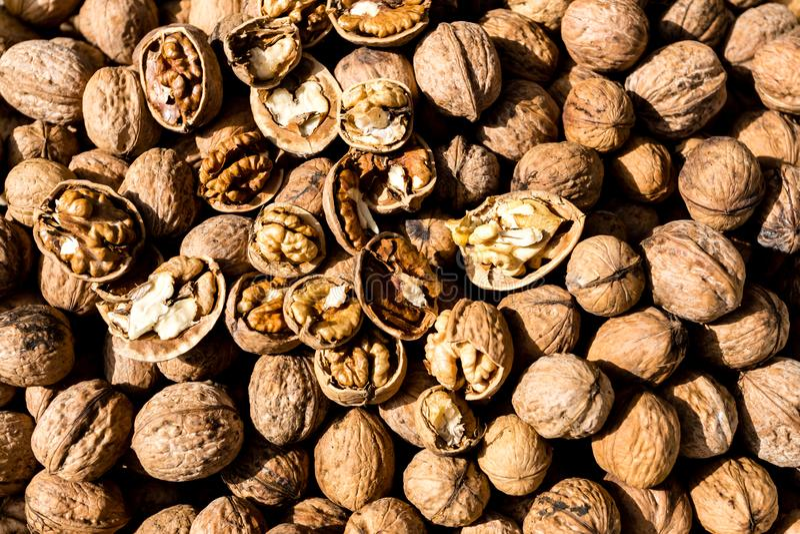 Raw fresh organic walnut. In shell nuts. Healthy food on the farmer market stock images