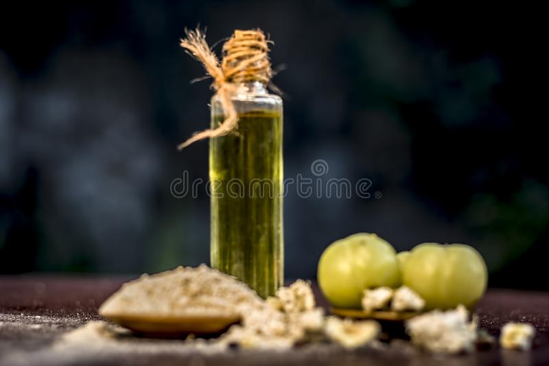 Raw fresh ripe Phyllanthus emblica,amla or Indian gooseberry with its powder and extracted oil on wooden surface. stock images