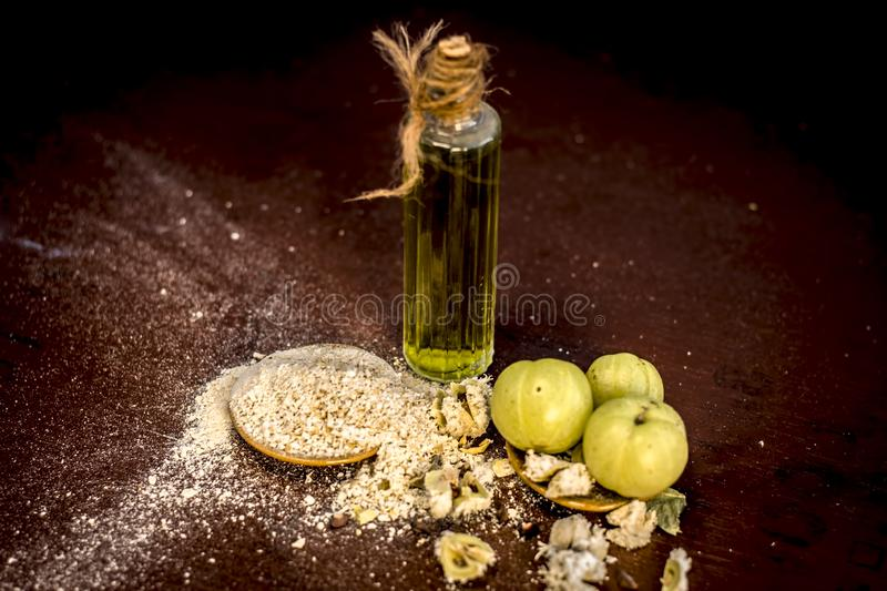 Raw fresh ripe Phyllanthus emblica,amla or Indian gooseberry with its powder and extracted oil on wooden surface. stock photography