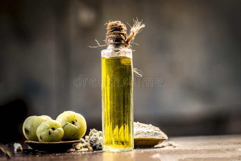 Raw fresh ripe Phyllanthus emblica,amla or Indian gooseberry with its powder and extracted oil on wooden surface. royalty free stock photo