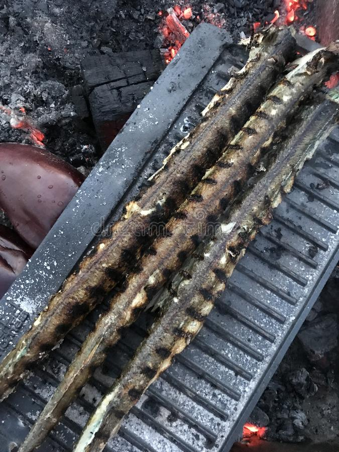 Three fish on grill - outdoor cooking royalty free stock images