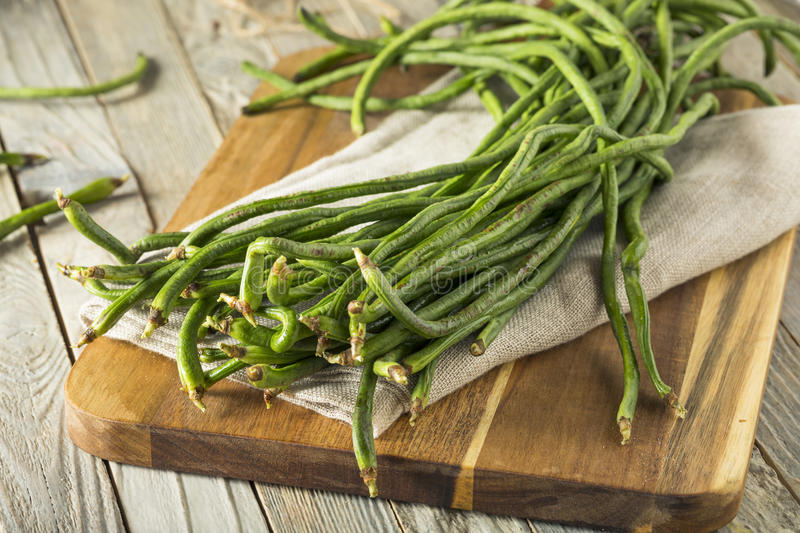 Raw Green Organic Chinese Long Beans. Ready to Cook With royalty free stock image
