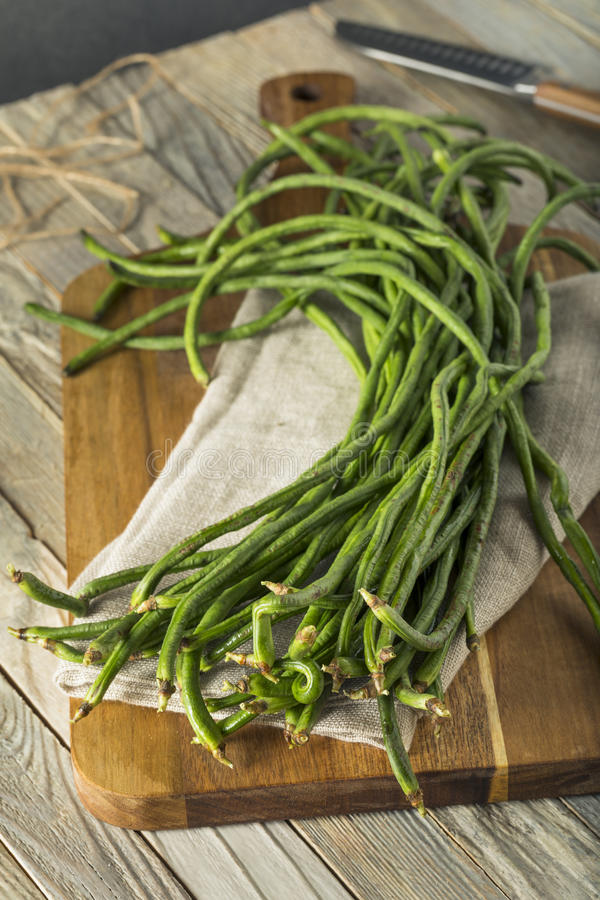 Raw Green Organic Chinese Long Beans. Ready to Cook With stock image