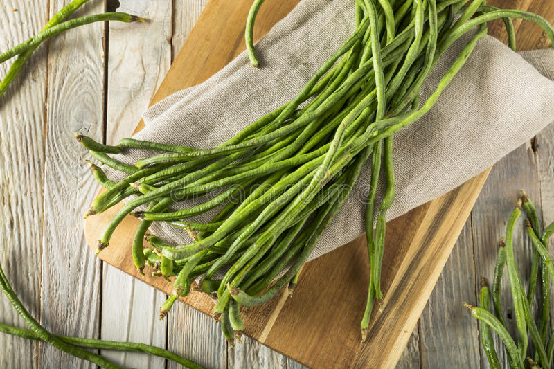 Raw Green Organic Chinese Long Beans. Ready to Cook With stock photography