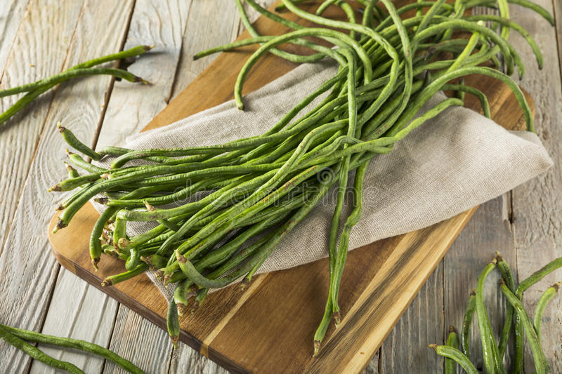 Raw Green Organic Chinese Long Beans. Ready to Cook With stock images