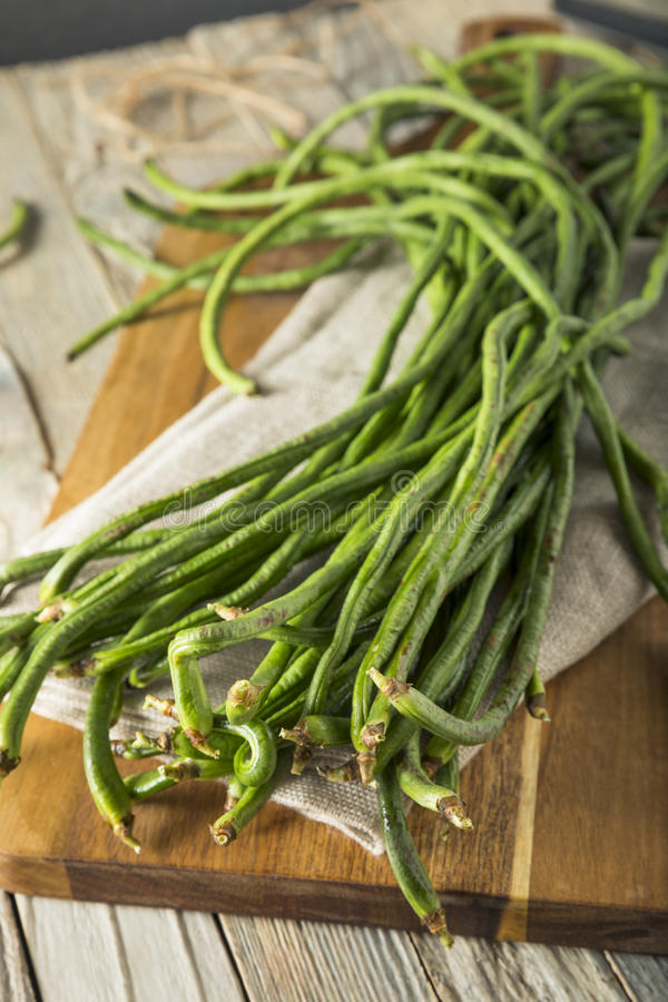 Raw Green Organic Chinese Long Beans. Ready to Cook With royalty free stock photo