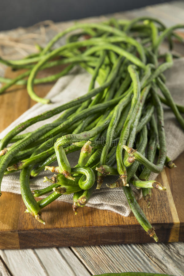 Raw Green Organic Chinese Long Beans. Ready to Cook With stock photos