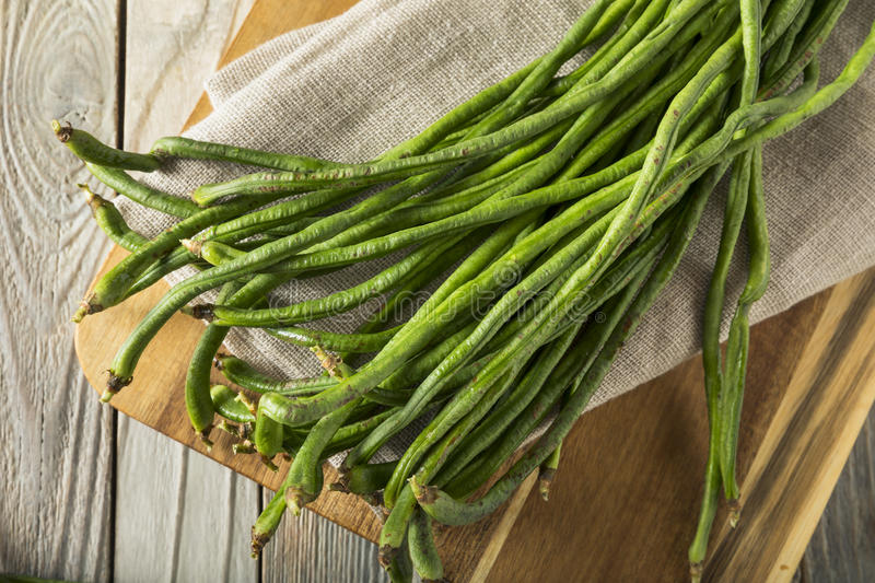 Raw Green Organic Chinese Long Beans. Ready to Cook With royalty free stock photography