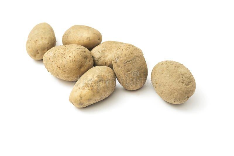Raw harvest potatoes stock photo