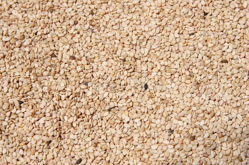 Download Raw Hulled Sesame Seeds stock photo. Image of roasted, nourishment - 125780