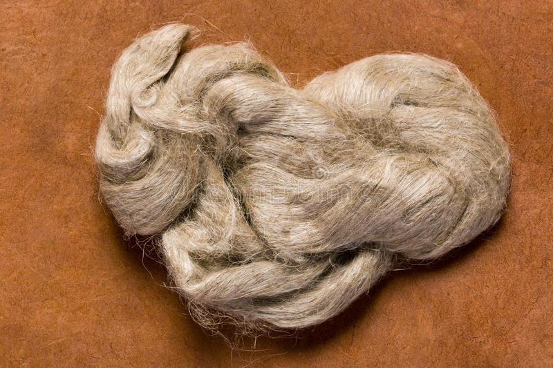 Raw jute. Fiber as it is used for the production of jute cloth royalty free stock image