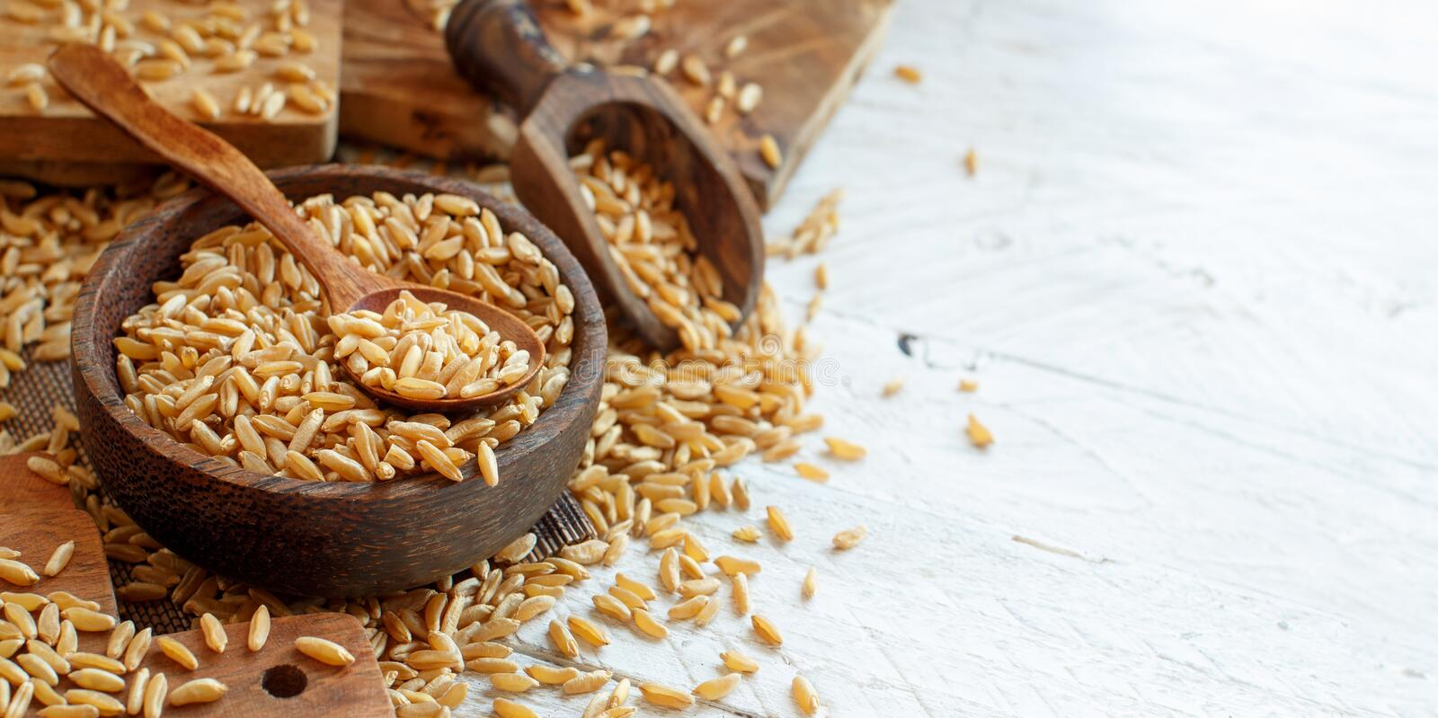 Raw Kamut grain in a wooden bowl royalty free stock images
