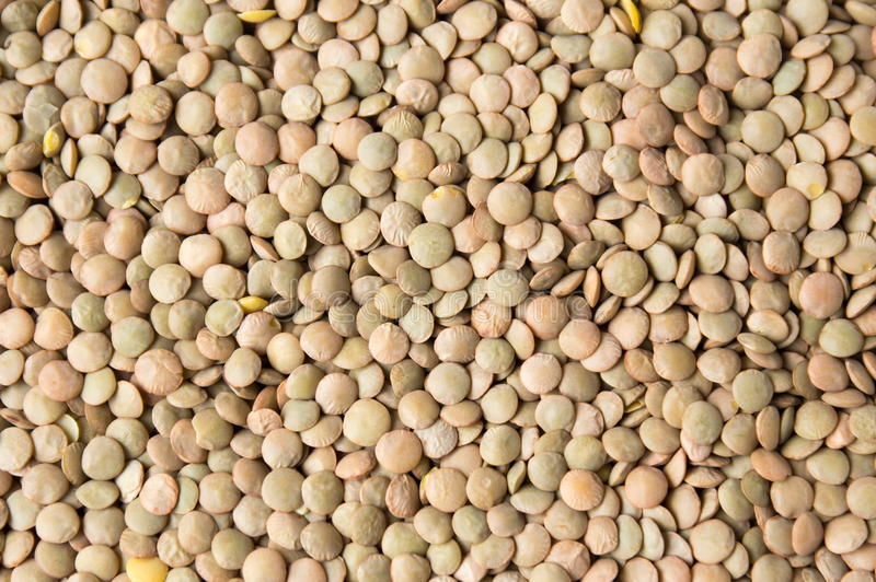 Raw lentil background pattern. Bunch of raw lentil forming a background pattern stock photos