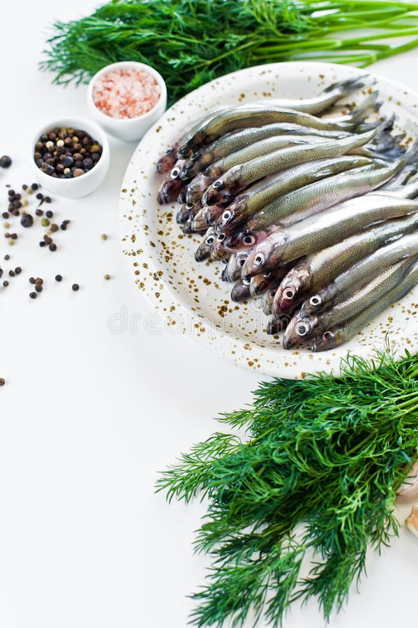 Raw mackerel on a plate, dill, pink salt, pepper and garlic. White background, top view, space for text. stock images