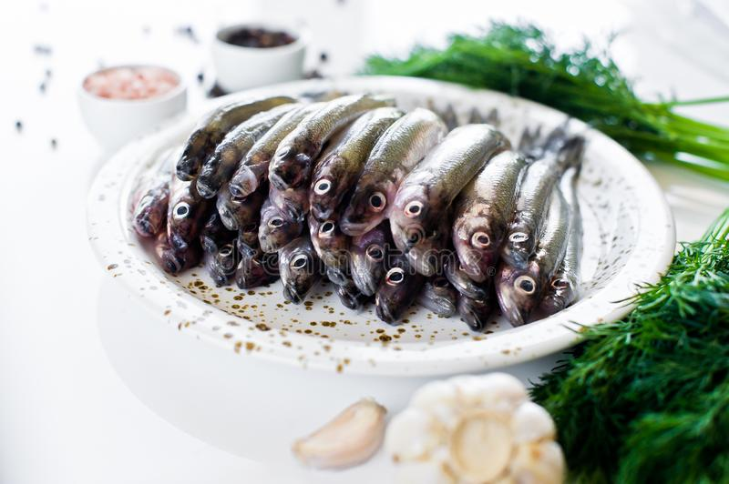 Raw mackerel on a plate, dill, pink salt, pepper and garlic. White background, top view, space for text. royalty free stock images