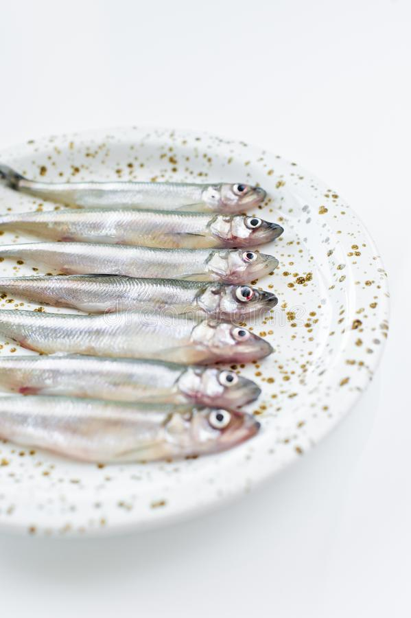 Raw mackerel on a plate. White background, top view, space for text. stock photos