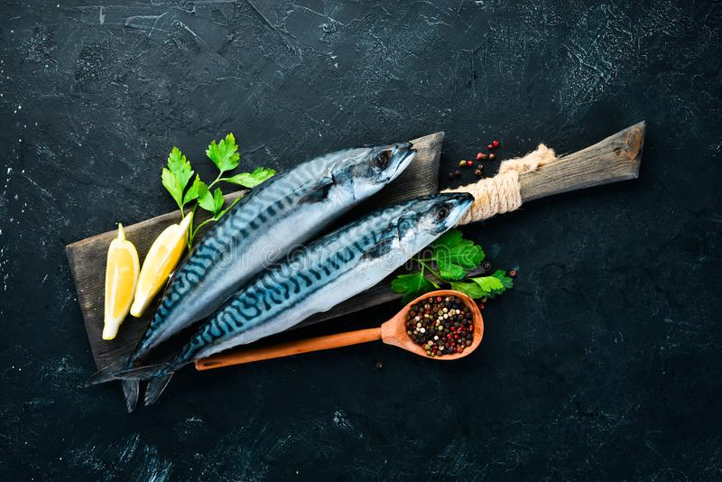Raw mackerel on stone background. Fish and seafood. Top view. Free copy space royalty free stock photo