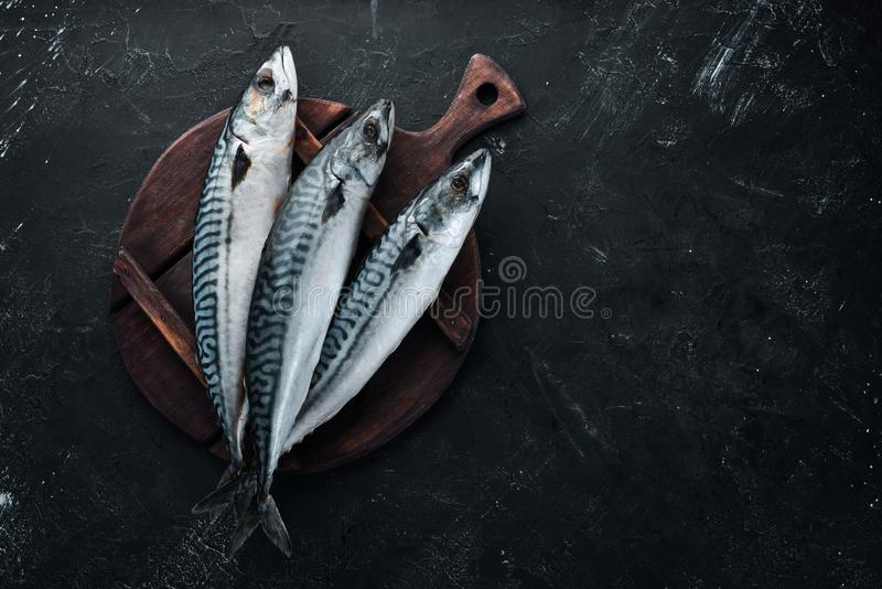 Raw mackerel on stone background. Fish and seafood. Top view. Free copy space stock photos