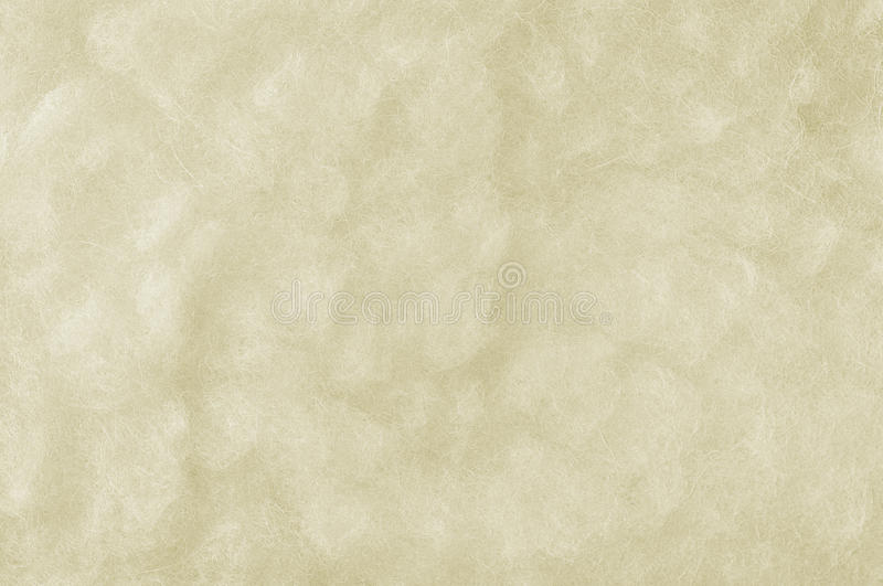 Raw Merino Sheep Wool Macro Closeup, Large Detailed White Textured Pattern Copy Space Background, Horizontal Texture Studio Shot stock photos