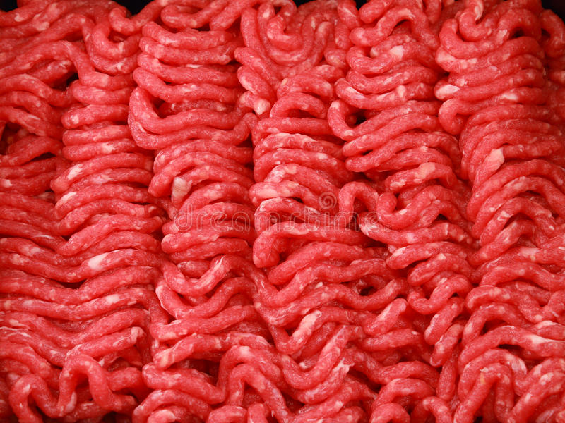 Download Raw minced beef close-up stock image. Image of beef, indoors - 19254541