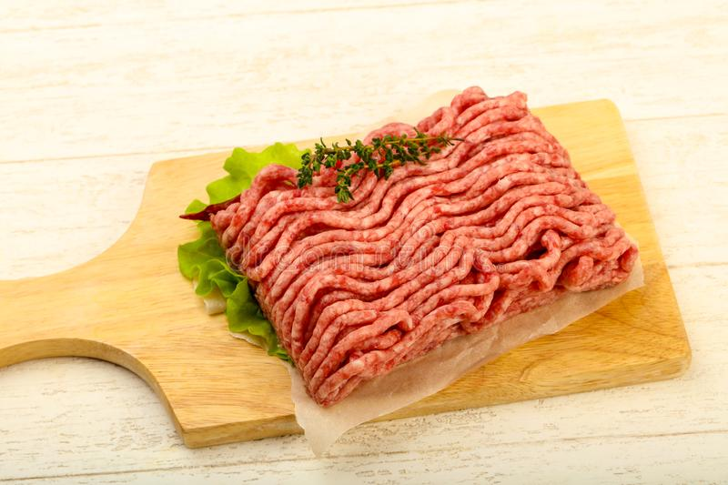 Raw minced beef meat royalty free stock photos