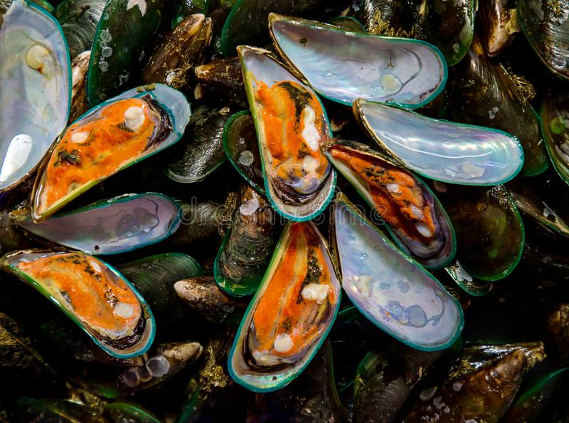 Raw Mussel shell in market,Fresh seafood in Thailand. pile green mussel for sale on the market royalty free stock images