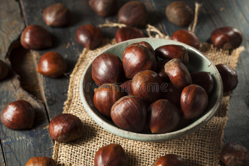 Raw Organic Brown Chestnuts royalty free stock photography