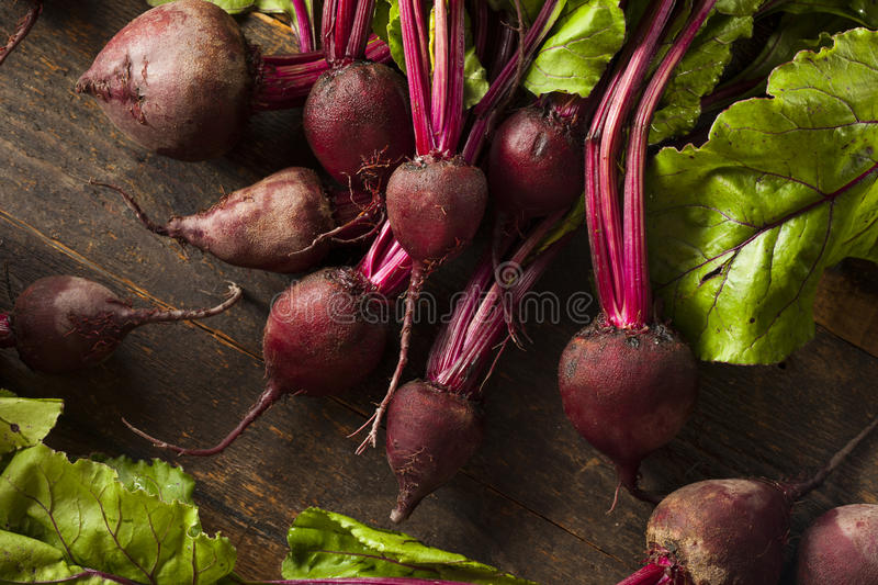 Raw Organic Red Beets stock photography