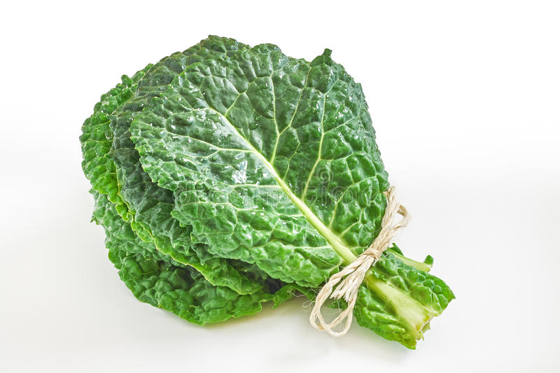 Raw organic savoy cabbage leaves royalty free stock photography