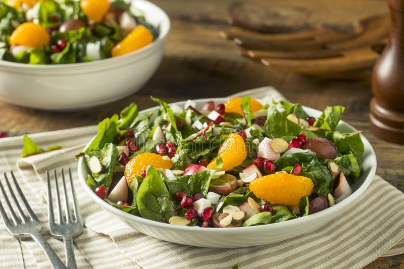 Raw Organic Winter Chard Salad with Oranges stock photography