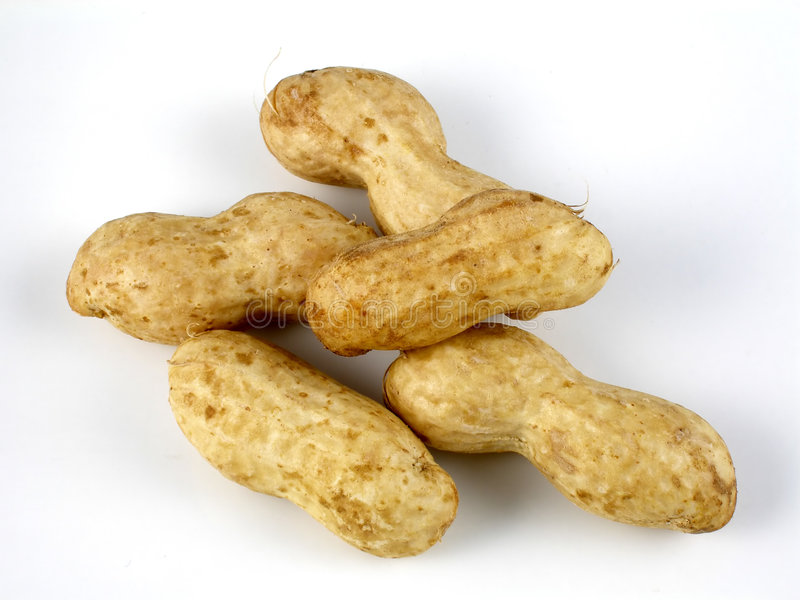 Raw peanuts stock photography