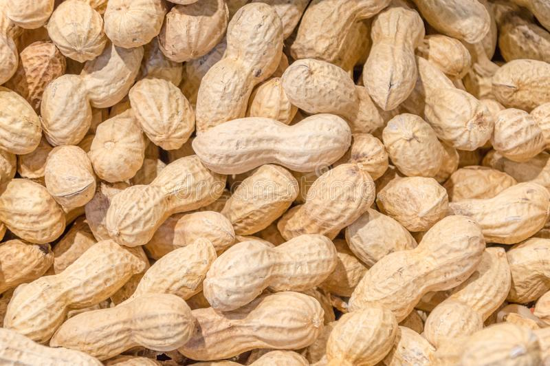 Raw Peanuts as background. stock photo